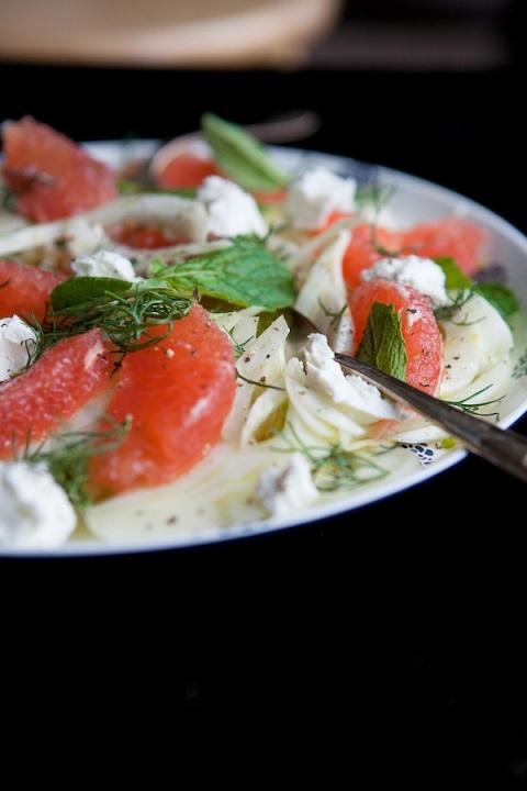 fennel grapefruit salad eye level